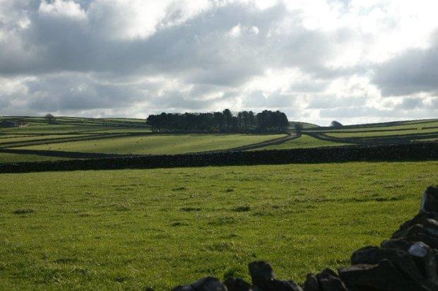 Head to Tone Blog: Image of Peak District fields copyright Naomi Bullivant